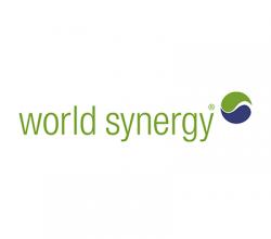 World Synergy